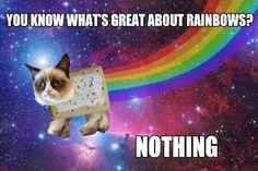 Grumpy Nyan Cat.
