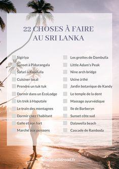 Voyage Sri Lanka, Le Sri Lanka, Image Categories, Blog Voyage, Life Goals, Places To Go, Road Trip, Challenges, Journey