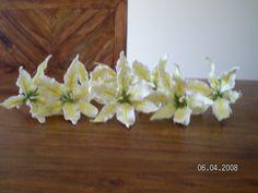 Bright yellow sugar stargazer Lily's