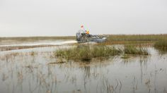 With safe operation speeds of 30 to 35 miles per hour, airboats are the best — and most fun — method of transportation in the Everglades. Image: © Adrian Danciu / Kinocut Pictures, LLC