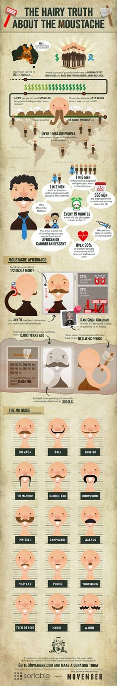 The Hairy Truth about the Moustache - To go along with the Movember display?