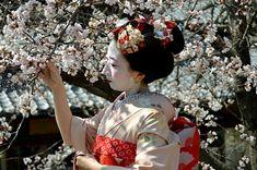 Japonia florilor de Mai și o nouă dinastie - Japonia cu Exact Travel Club.