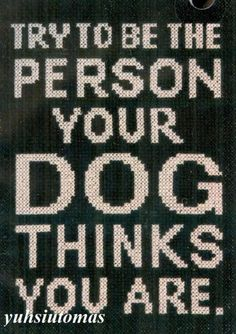 Dogs are the best judge of character!!