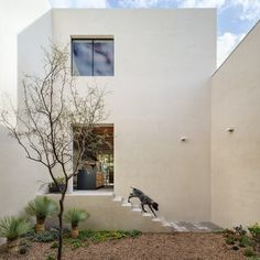 Completed in 2015 in San Miguel de Allende, Mexico. Images by Rafael Gamo. Casa La Quinta is a weekend house located in the town of San Miguel de Allende, Guanajuato. Patio Interior, Interior And Exterior, Architecture Photo, Contemporary Architecture, House Architecture, Mexican House, Archdaily Mexico, Raised House, Journal Du Design