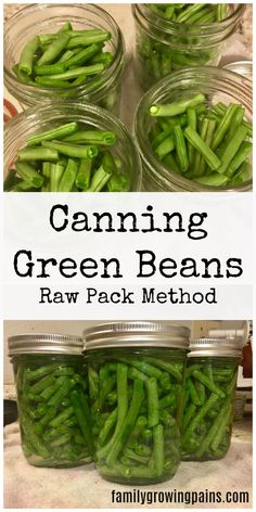 Canning green beans, using the raw pack method, takes less than an hour. Make sure to use a pressure canner!