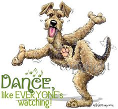 Airedale Terrier Dance like Everyone's watching