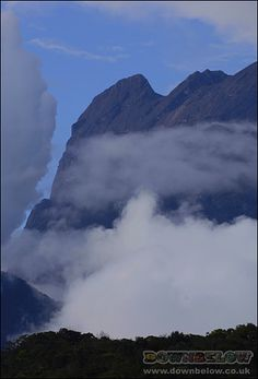 From the Nepenthes trail in Mesialu, the afternoon clouds almost block any view of the mountain! Mount Kinabalu, Sea Level, Borneo, Natural World, Trail, Exotic, Mountain, Clouds, Places