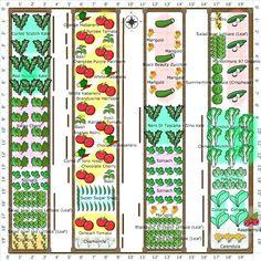 Free Vegetable Garden Plans, Vegetable Garden Planner, Vegetable Garden  Layout | Garden | Pinterest | Gardens, Garden Planning And Vegetable Garden Gallery