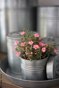 Galvanized Containers ~ Inspiring & Dreamy