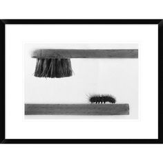 """Global Gallery 'Dear Friend' by Stefano Mallus Framed Photographic Print Size: 18"""" H x 24"""" W x 1.5"""" D"""