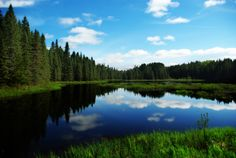 Our Favourite Ontario Provincial Parks Ontario Provincial Parks, Ontario Travel, America And Canada, Free Entry, Exotic Places, Wilderness, National Parks, Places To Visit, Coast