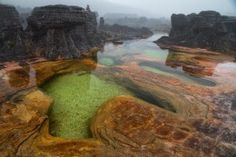 4. Mount Roraima in South America, Valenzuela.  Flora and Fauna on top of the tabletop mountain is endemic in the area and it rains almost everyday.   There are also numerous limpid pools and un-worldly rock formation on top.