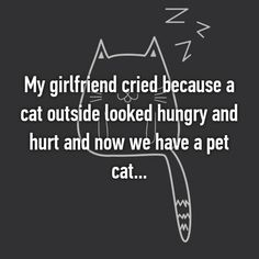 21 Boyfriends Share The Ridiculous Things That Made Their Girlfriends Cry Crazy Cat Lady, Crazy Cats, Funny Cute, Hilarious, Cats Outside, Whisper Confessions, Bad Puns, Sweet Stories, Funny Animals