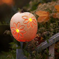 Bring fall's most popular decoration out to the garden. Try carving a bold floral pattern in lieu of a scary face. That way, you can show off your pretty pumpkin during Halloween and beyond.