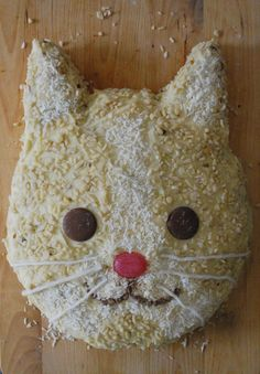 cat cake - looks like mini chips for the mouth, could use junior mints for eyes; whiskers & nose out of frosting; coconut and chopped nuts for texture