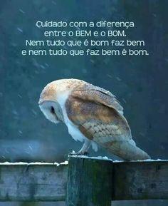 E o bom da vida é viver bem, estar bem, querer bem.!...