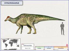 Hypacrosaurus by cisiopurple
