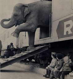 Vintage photo. Kids watching elephant depart a train. Amazing perspective