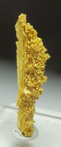 Mineral Shows - Mineral Specimens