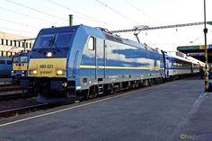 Reds Bbq, Locs, Rail Train, The Good German, Rail Transport, Bbq Apron, Small Fireplace, Bonde, Trains