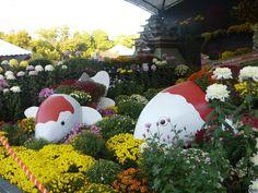 Jardín de Shukkeien, en Hiroshima - Japón