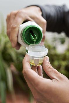 Liquid fertilizer via @ Liquid Fertilizer, Organic Fertilizer, Plant Growth, Plant Care, Fruit Plants, Sea Plants, Sustainable Architecture, Residential Architecture