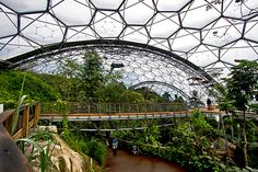Canopy Walkway in Rainforest Biome at Eden Project in Cornwall, England