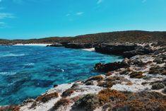 Rottnest Island, Western Australia Good Excuses, The Rest Of Us, Turquoise Water, Car Rental, Western Australia, Brewery, Island, World, Beach