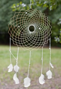 really cool dream catcher!!