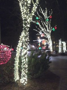 Christmas in Freeport, Maine #freeport #maine #christmas