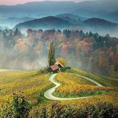 Heart shaped road, Slovenia Photo by @populerkare