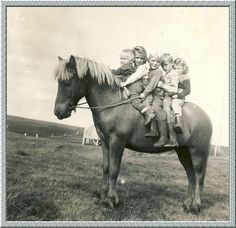 Back in the old days when there were no cars!!!!! Icelandic kids on a Icelandic pony.
