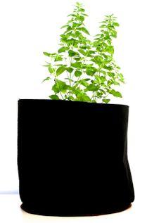 Solucion de Cultivo Simple (33L)