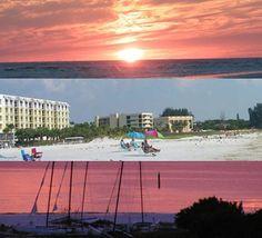 110 best where to stay images siesta key siesta key florida rh pinterest com