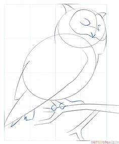 How to draw a realistic owl step by step. Drawing tutorials for kids and beginners. Beginner Drawing Lessons, Drawing Tutorials For Kids, Drawing For Beginners, Beginner Painting, Art Drawings Sketches Simple, Animal Sketches, Bird Drawings, Animal Drawings, Eye Drawings