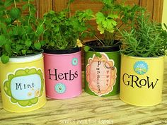 7 Easy DIY Garden Gift Ideas Tin can herb container gardens make easy, economical gifts Unique Garden Gifts, Unique Gardens, Container Herb Garden, Herb Planters, Herb Gardening, Vegetable Garden For Beginners, Gardening For Beginners, Tin Can Crafts, Aquaponics Diy