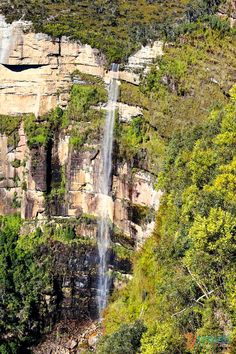 The Blue Mountains is een berggebied in de regio New South Wales