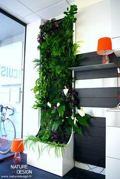GALERIE - Mur Végétal et Aquariums sur mesure.Nature Design.