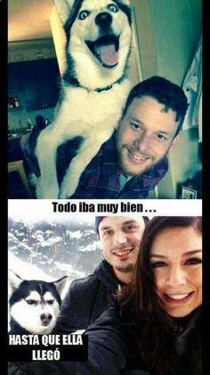 Memes Humor, Funny Jokes, Hilarious, Spanish Jokes, Funny Spanish Memes, Funny Images, Funny Pictures, Anime Meme, Best Memes