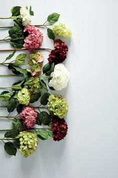 Still Life- arranging flowers in a non traditional way for still life, makes it look more contemporary.