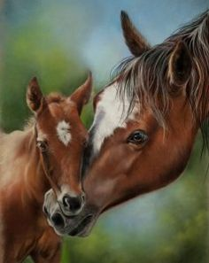 Mare and Foal | Kay Witt Fine Art Workshop Packets