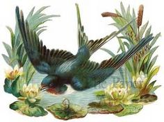 1880s Christmas Cards/birds - Bing images