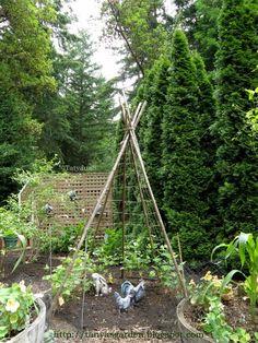 MySecretGarden: Sprucing Up a Vegetable Garden – Garden Ideas Organic Gardening, Gardening Tips, Vegetable Gardening, Types Of Mulch, Reading Garden, Plant Supports, Herb Garden, Trellis, Outdoor Gardens