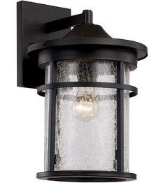 Trans Globe Lighting 40382-BK Avalon 1 Light 18 inch Black Outdoor Wall Lantern photo