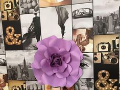 Medium coloured paper flowers, beige or purple. Dimensions: 13/13 cm