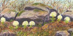 SeniorTip Watercolor Landscape, Rocks, Pastel, Trees, Drawings, Plants, Painting, Art, Art Background
