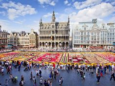 Travel essentialsWhy go now?Belgium's capital comes to life in summer: café life spills out on to sunny terraces, the city's many parks are full and the Royal Palace (1) opens until September. The biennial flower carpet (flowercarpet.be), at Grand Place (2), opens at 10pm on 14 August and runs from 9am-11pm from 15-17 August.