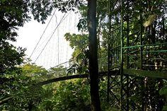 Reserva Verde Selva, Sarapiquí, Costa Rica