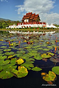 Ho Kham Luang Royal Pavilion, Chiang Mai, Thailand -   This building featured Lanna architecture, the architectural style of northern Thailand; inside, visitors saw pictures of King Bhumibol's works and his dedication.  Photo by  Suradej Chuephanich