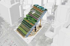 Urban farming.  Great use of space!